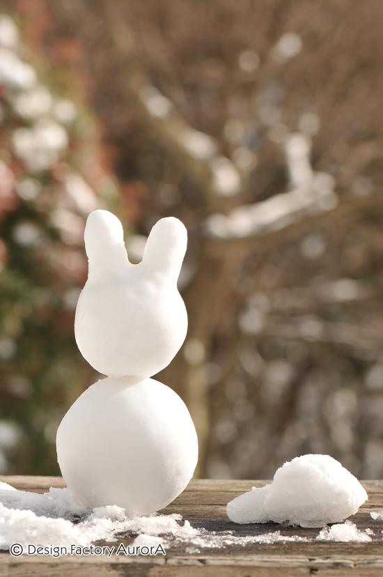 雪うさぎ with 雪カメ